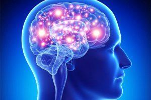 نورولوژیست – متخصص مغز و اعصاب کیست؟